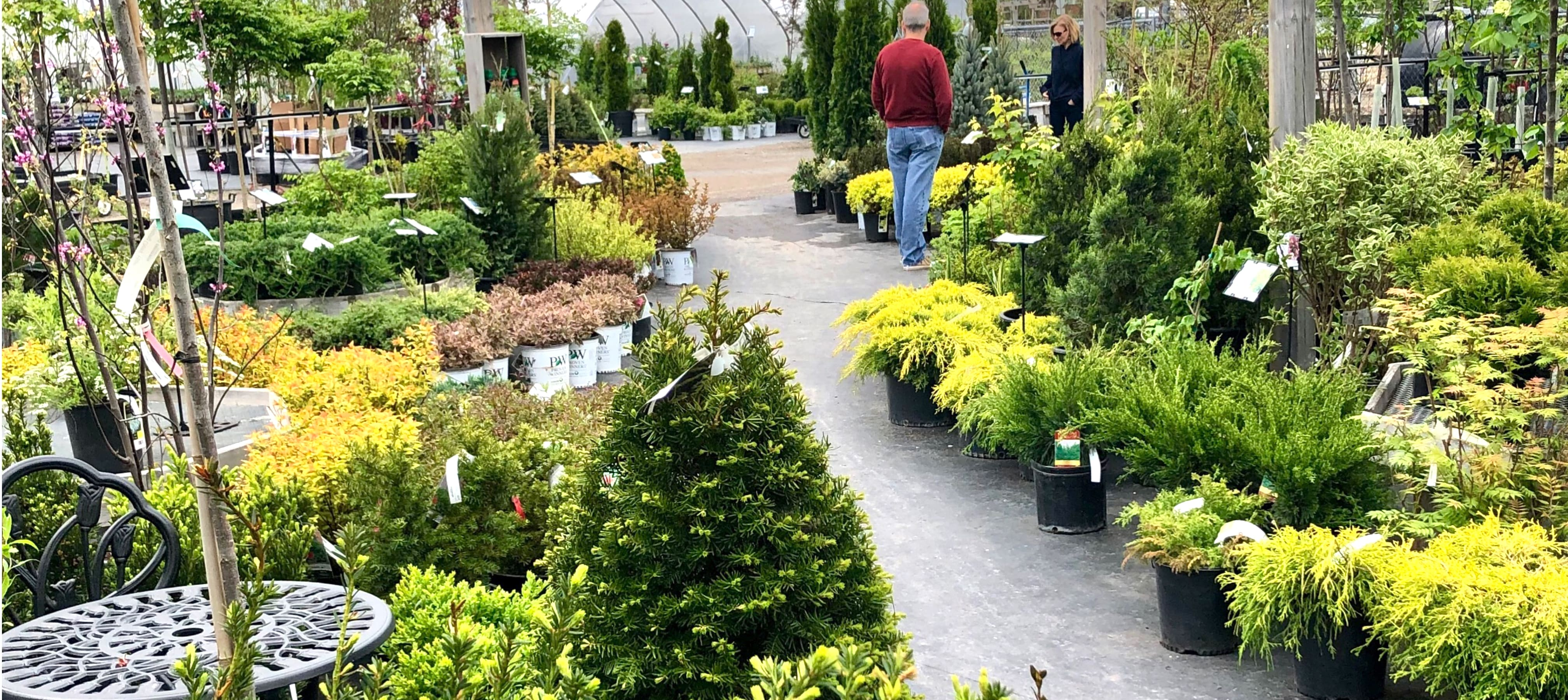 Environmental Commitment | Gemmell's Garden Centre | By Local