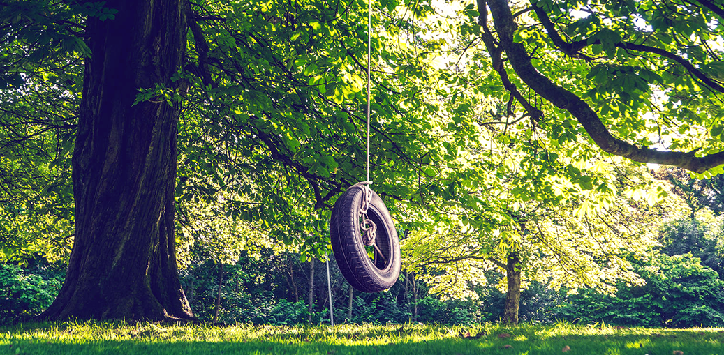 Swinging on a Tire Swing | For the Love of Trees