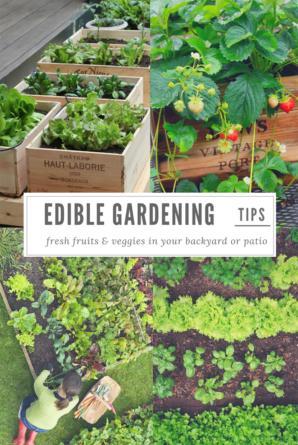 edible gardening tips for fresh fruits vegetables u0026 herbs